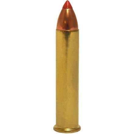 Hornady 22 wmr critical defense ballistics